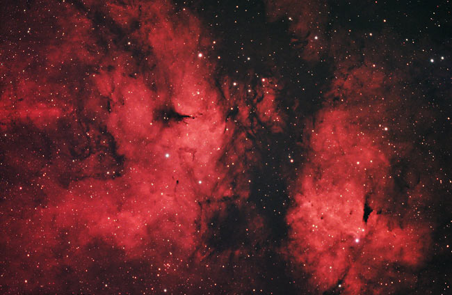 IC 1318 - The Butterfly Nebula