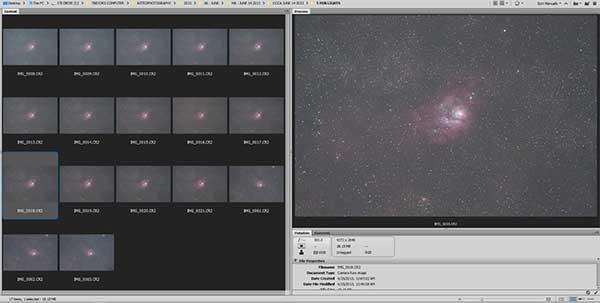 RAW image files in Adobe Bridge