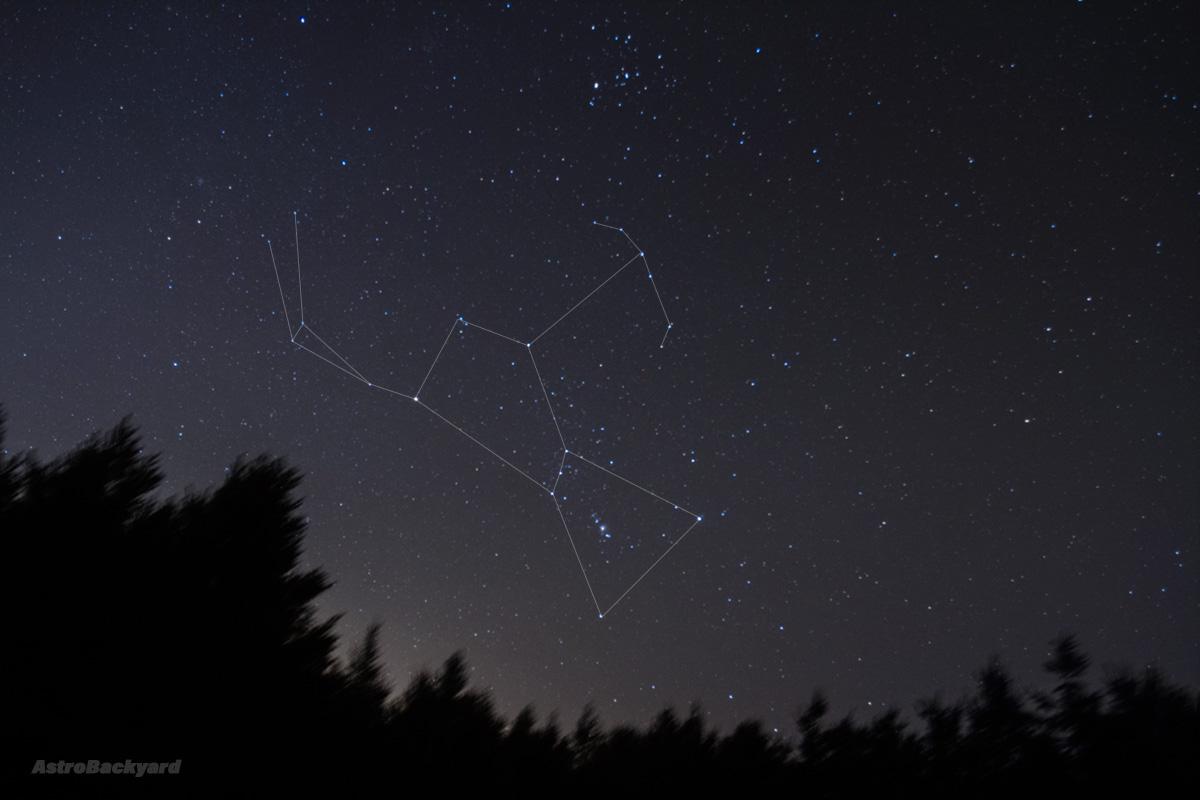 Orion Nebula - AstroBackyard | Astrophotography Blog ...