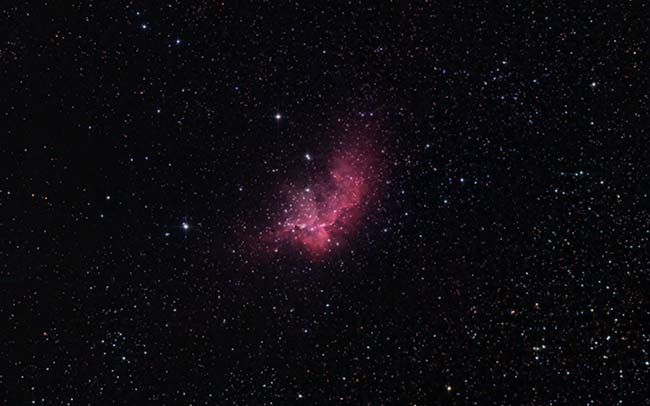 The Wizard Nebula with a modified DSLR