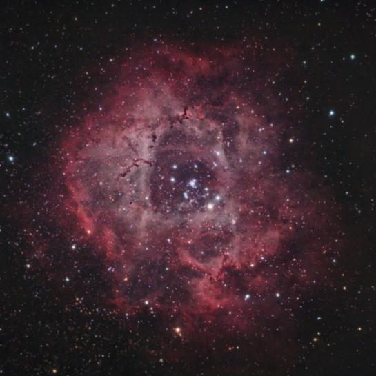 Rosette Nebula Stock