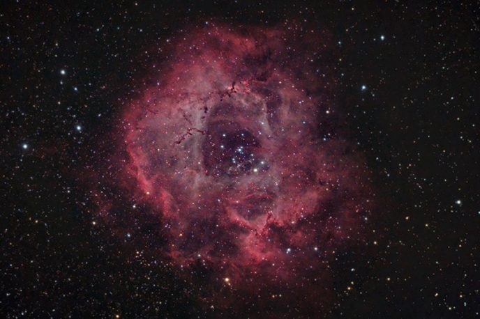 NGC 2244 - The Rosette Nebula