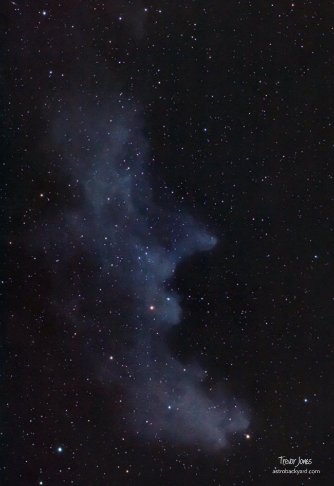 IC 2118 - Witch Head Nebula