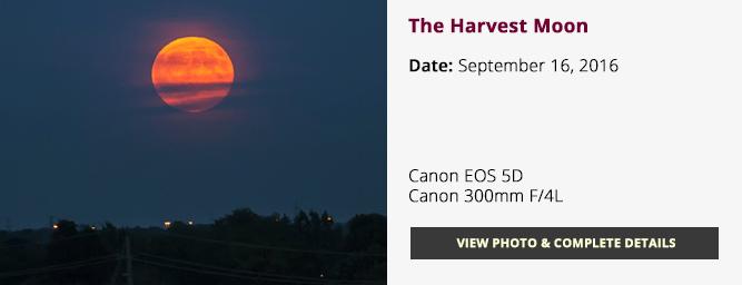 Harvest Moon 2016