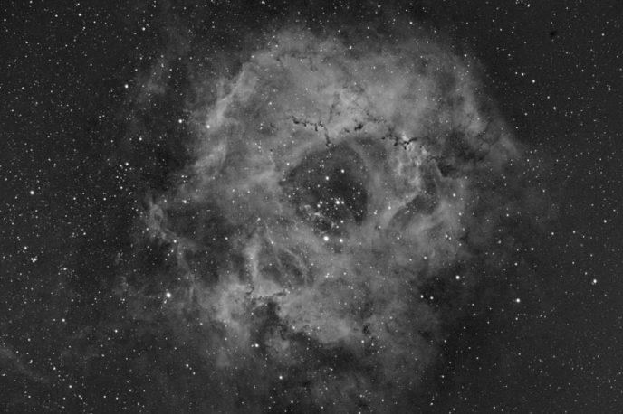Rosette Nebula Ha