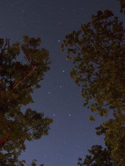Camping and Star Gazing