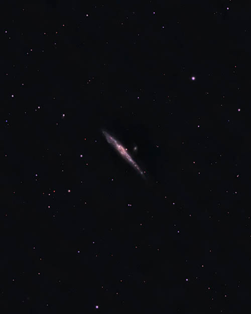 The whale galaxy through 80mm telescope