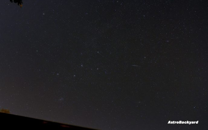 Perseid meteor photo from my backyard