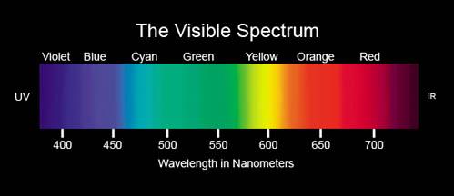 visible spectrum - wavelengths in nm
