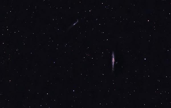 Whale Galaxy