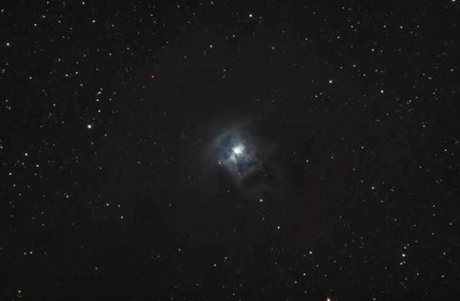 Iris Nebula - NGC 7023