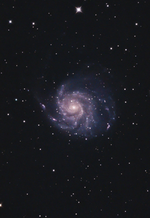 The Pinwheel Galaxy in Ursa Major