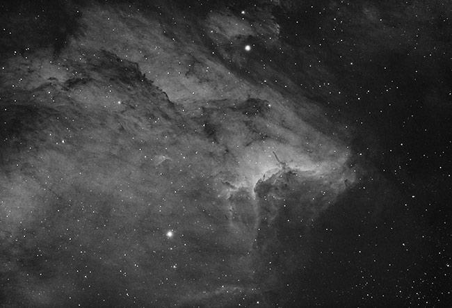 Pelican Nebula ha