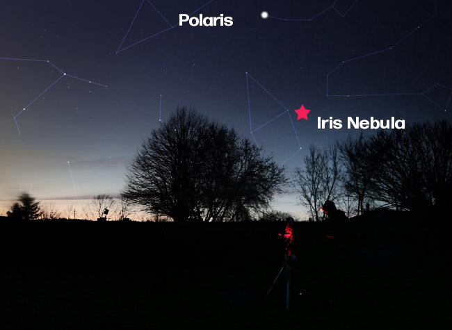 where to find to Iris Nebula