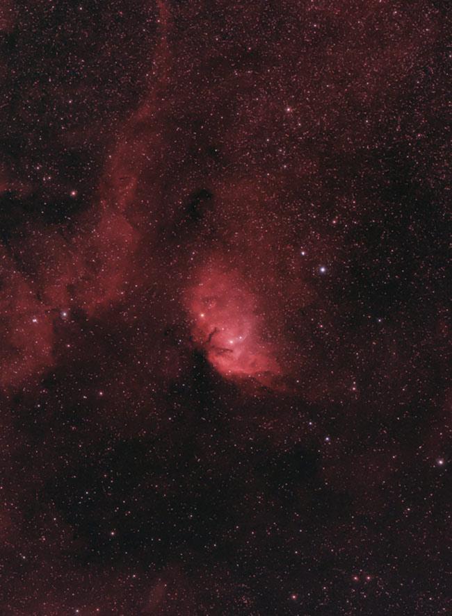 Tulip Nebula
