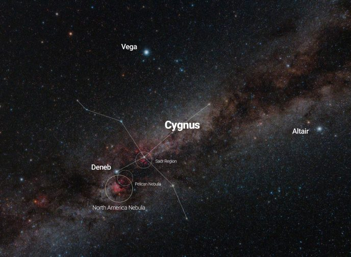 Cygnus constellation map