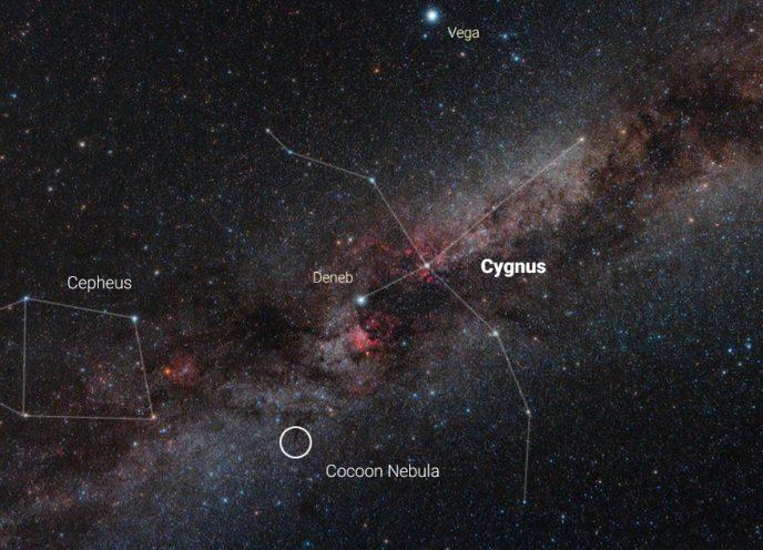 Cocoon Nebula in Cygnus