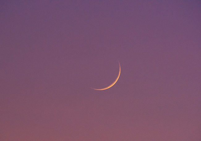1 day old moon