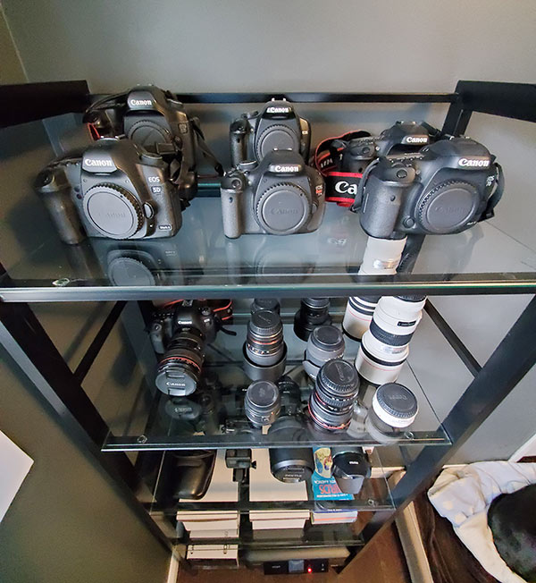 Canon camera collection