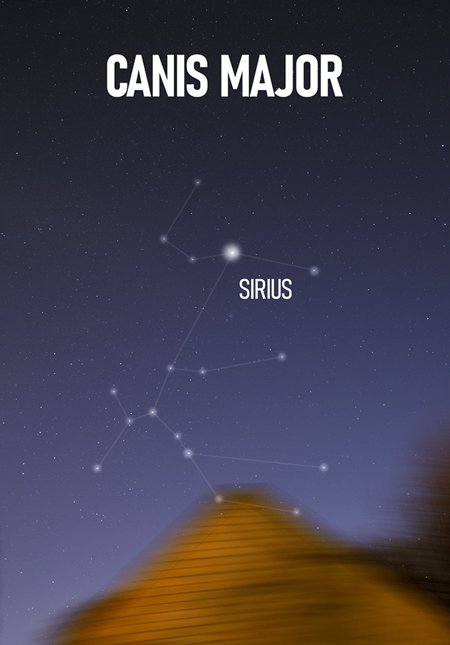 Canis Major Constellation