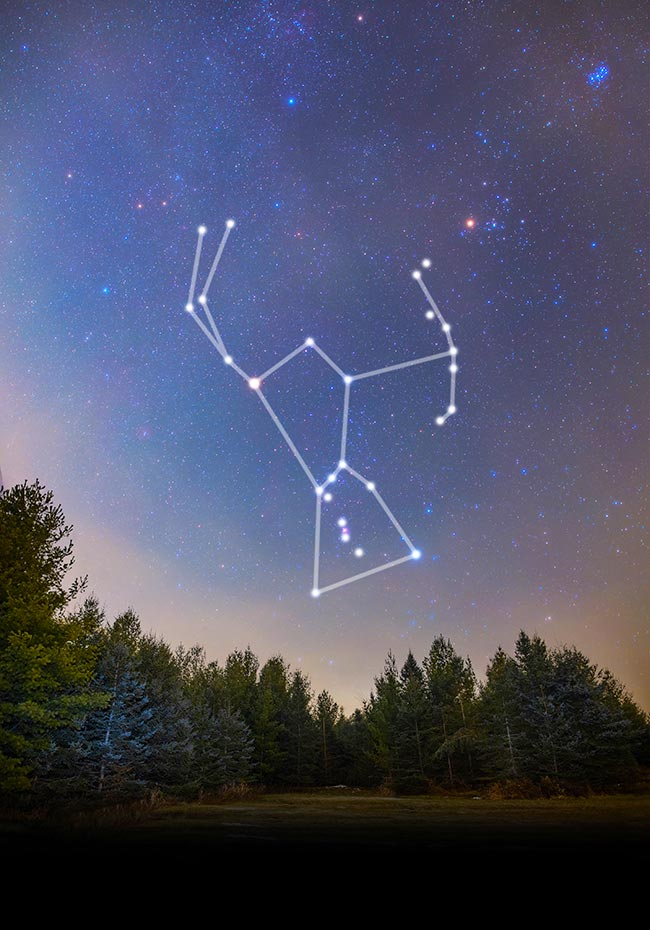 The Orion Constellation | Pictures, Brightest Stars, and How to Find It