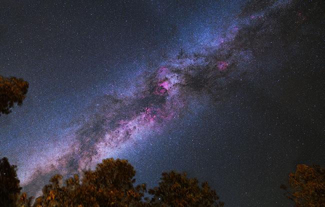 Cygnus region of the Milky Way