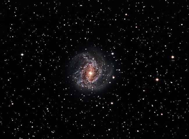 Andy Pinwheel Galaxy